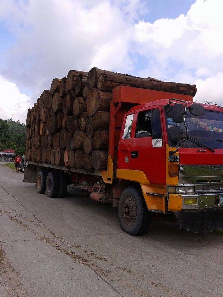 Apprehended Logs. Photo courtesy by Royal Imperial Lupah Sūg United Islamic United Multi-Racial Kingdom of Sulu and North Borneo