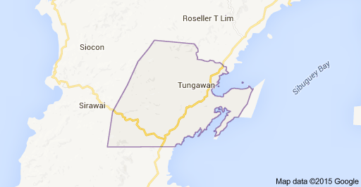 Tungawan Mayor died in an ambush, Vice mayor and six others companion were wounded