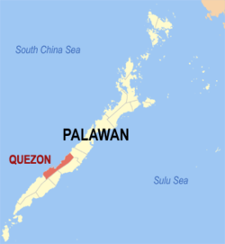 Missing two foreign nationals safely rescued off the sea of Quezon, Palawan