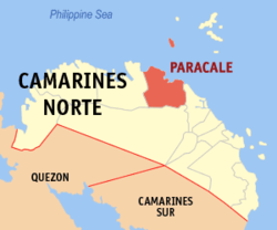 Gold panner shot dead in Paracale, Camarines Norte, wife survives in the attack