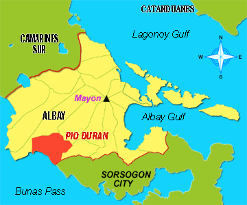 Couple dies in Pio Duran, Albay  shooting incident