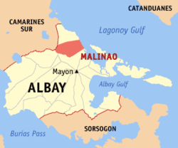 Malinao drug surrenderee killed