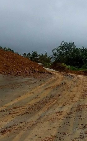 Heavy rains triggers landslides in two villages in Viga, Catanduanes